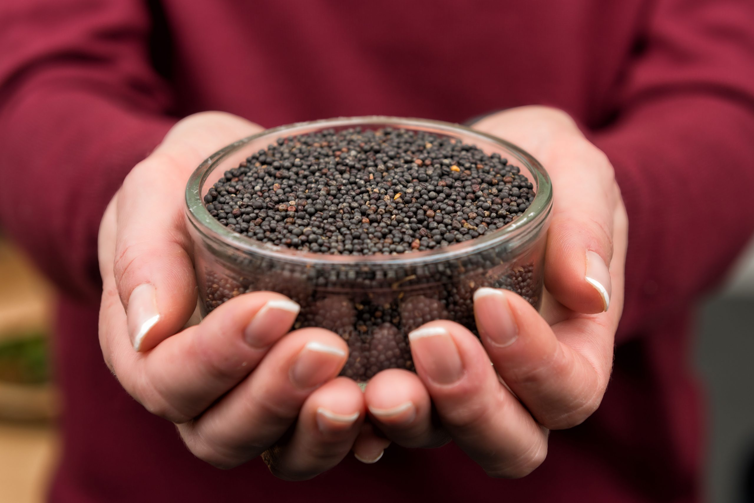 Fibre in demand – elevate the nutritional value of your food product with BlackGrain